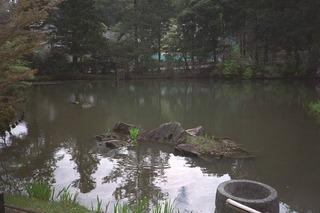 柳生円成寺IMG0052 (1).jpg