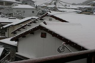 雪2016Jan24 (3).JPG