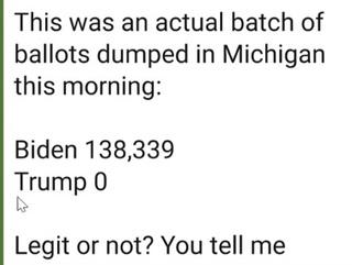 MIchegan vote.jpg