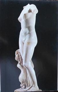 Vinus Cyrene.JPG
